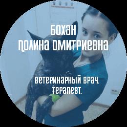 О докторе: Бохан Полина Дмитриевна. Ветеринарный врач, терапевт.