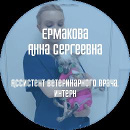 О докторе: Ермакова Анна Сергеевна. Ассистент ветеринарного врача, интерн. В настоящий момент является студенткой 5 курса факультета ветеринарной медицины СПбГАВМ.