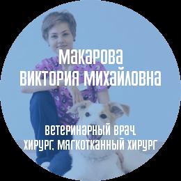 О докторе: Макарова Виктория Михайловна. Ветеринарный врач, интерн. Профессиональные интересы: мягкотканная, торакальная и пластическая хирургия, интенсивная терапия.