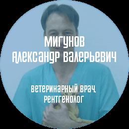 О докторе: Мигунов Александр Валерьевич