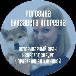 О докторе: Рогозина Елизавета Игоревна. Ветеринарный врач, невролог, хирург.