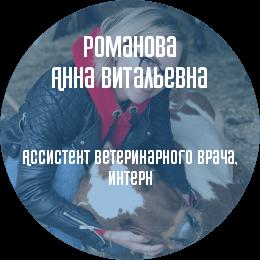 О докторе: Романова Анна Витальевна. Ветеринарный врач, интерн. В настоящий момент является студенткой 5-го курса факультета ветеринарной медицины СПбГАВМ.