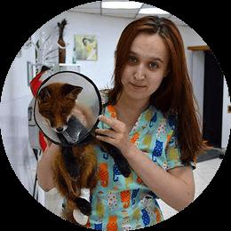 Самборская Никита Сергеевна. Ассистент ветеринарного врача. Студентка СПбГАВМ.
