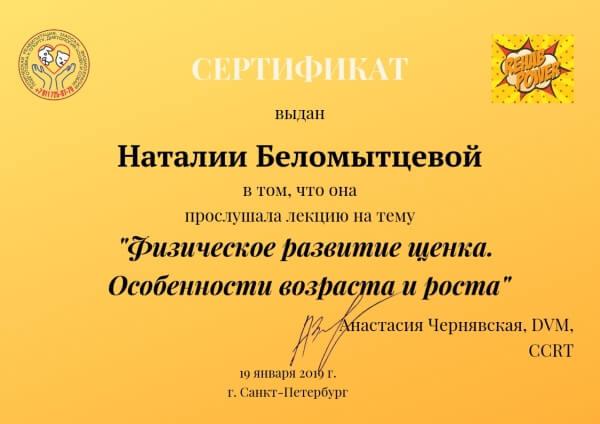 Сертификат выдан Наталии Беломытцевой в том, что она прослушала лекцию Анастасии Чернявской на тему «Физическое развитие щенка. Особенности возраста и роста».