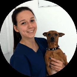 Ассистент ветеринарного врача Силич Дарина Денисовна. В настоящий момент является студенткой 4 курса СПбГАВМ.