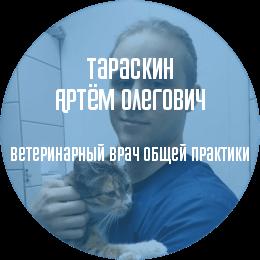 О докторе: Тараскин Артём Олегович. Ассистент ветеринарного врача, интерн.