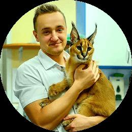 Бородяев Вячеслав Евгеньевич