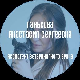 О докторе: Ганькова Анастасия Сергеевна. Ассистент специалиста по экзотическим животным Беломытцевой Н. В.