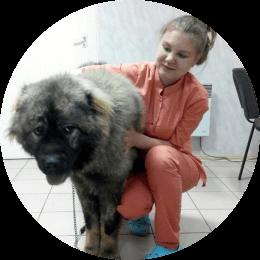 Гусарова Полина Игоревна. Ветеринарный врач общей практики.
