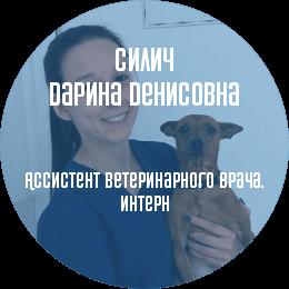 О докторе: Ассистент ветеринарного врача Силич Дарина Денисовна. В настоящий момент является студенткой 5 курса СПбГАВМ.