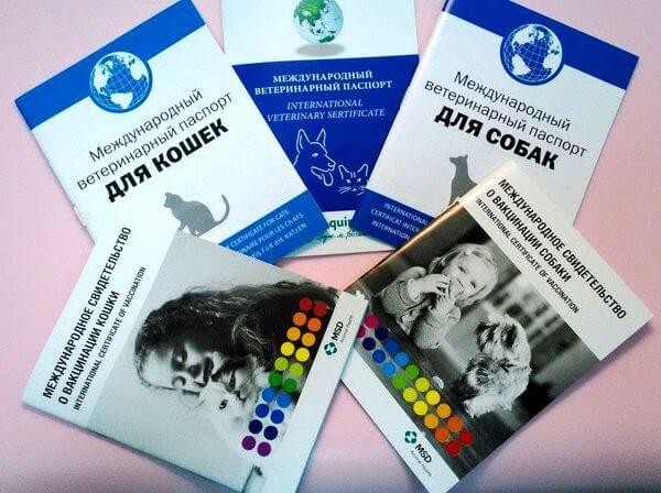 Международные ветеринарные паспорта и свидетельства о вакцинации для собак и кошек.